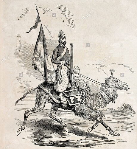 persian-camel-artillery-man-CWRD9T